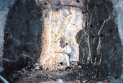 Enorme vena d'oro nella miniera Hishikari