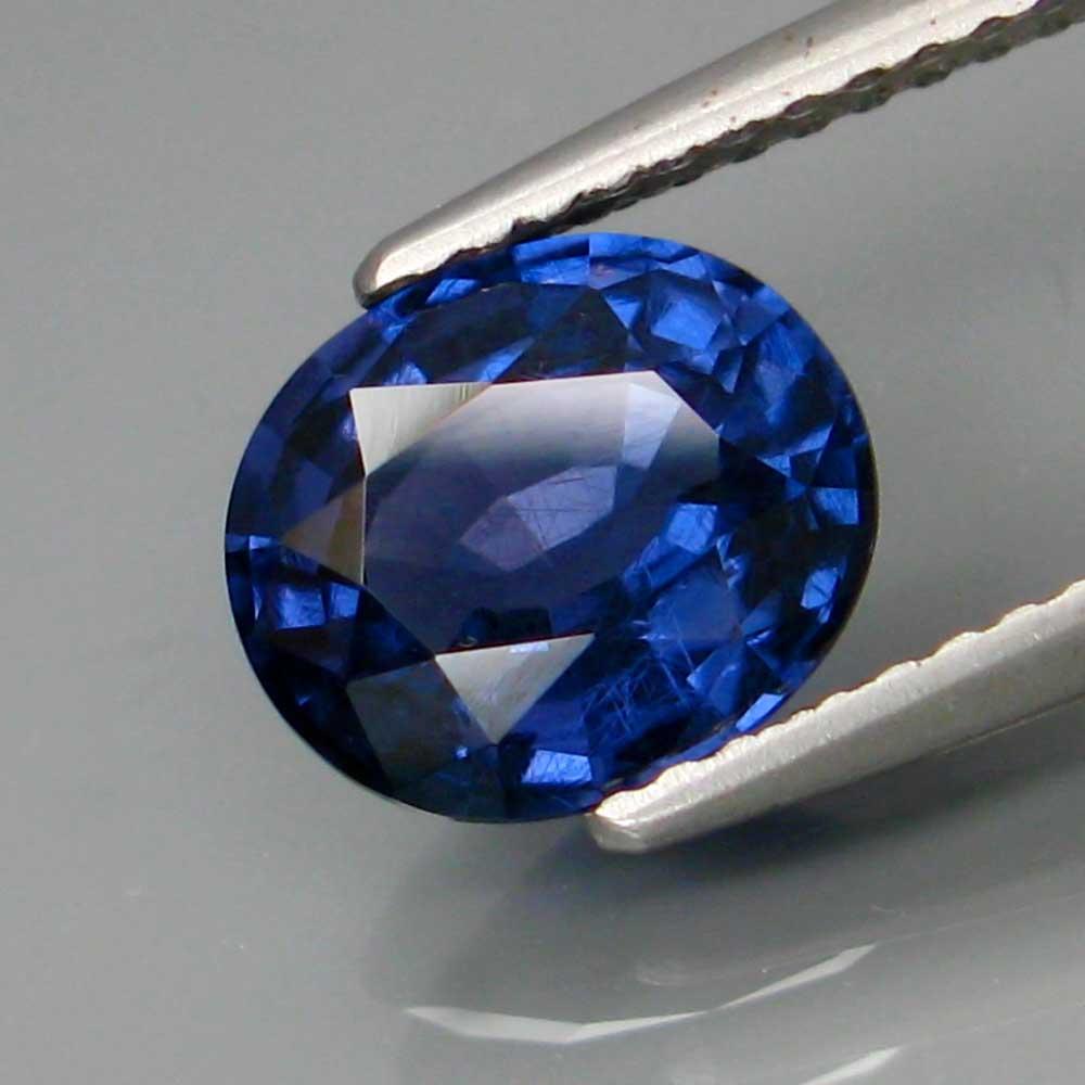 Spinello blu
